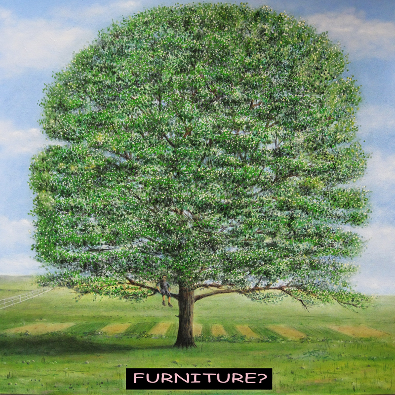 FURNITURE? by Paul Whitehead